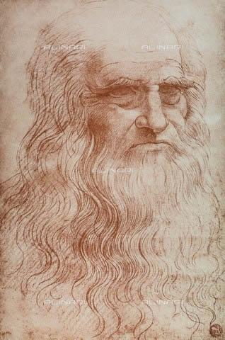 Leonardo: autoritratto a sanguigna
